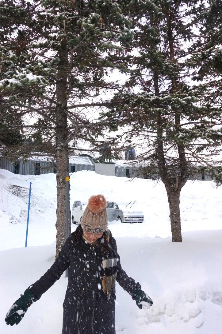 『北海道』一生一定要去住一次,星野渡假村(滑雪盛地)