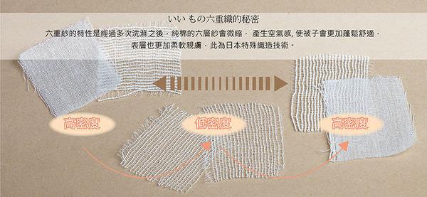 六層紗胚布分層介紹