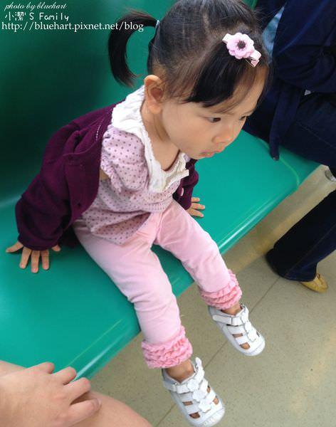 『6m-2Y』妮妮學步鞋大集合