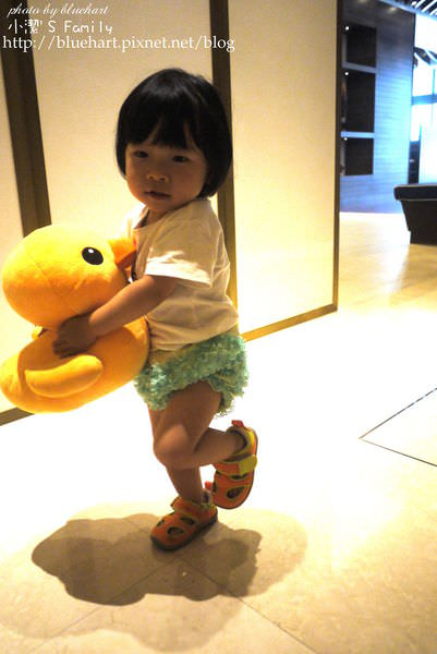 『育兒』0-2歲育兒大整理(含副食品以及母乳整理)